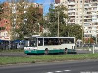 Санкт-Петербург. НефАЗ-5299-30-32 (5299CN) в184ве