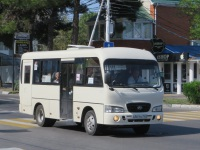 Анапа. Hyundai County SWB а561кс