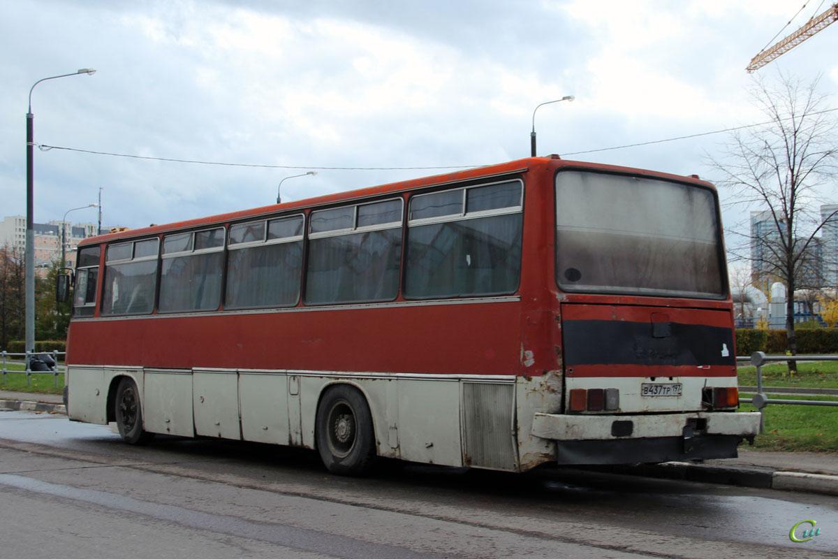 Москва. Ikarus 256.54 в437тр