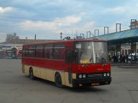 Ikarus 256.74 аа803