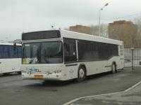 Тюмень. МАЗ-103.569 ар144