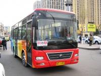Yutong ZK6731DG2 黑G 11983