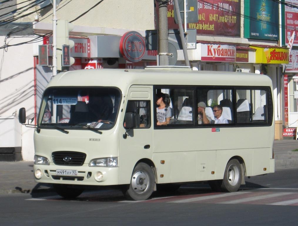 Анапа. Hyundai County SWB м491ху