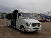 Луидор-2236 (Mercedes Sprinter) а174рс