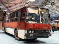 Санкт-Петербург. Ikarus 255.70 б/н