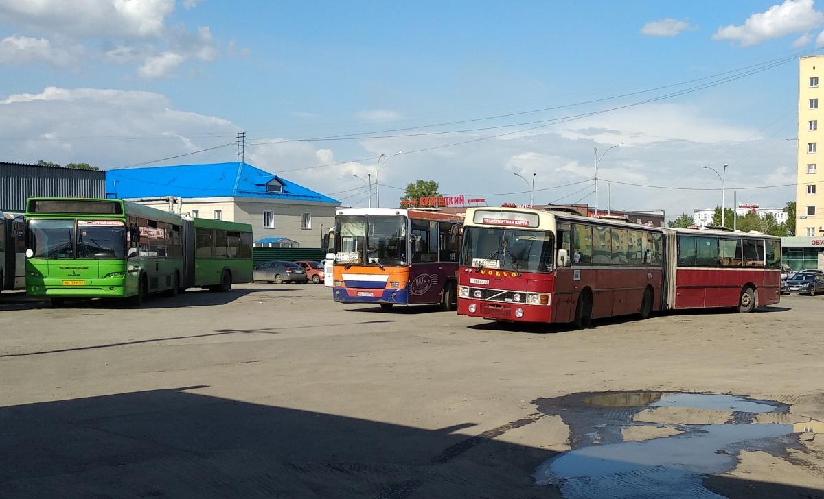 Кемерово. НефАЗ-5299 у029оа, МАЗ-105.465 ар039, Van Hool T8 Alizée 210 (Volvo B10MA-55) т168ск