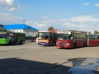 НефАЗ-5299 у029оа, МАЗ-105.465 ар039, Van Hool T8 Alizée 210 (Volvo B10MA-55) т168ск