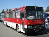 Анапа. Ikarus 250.59 а781тт