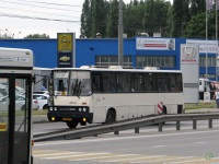 Липецк. Ikarus 250 ас481