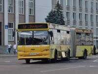 Гомель. МАЗ-105.465 AE2173-3