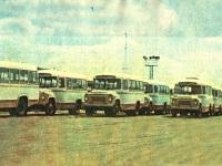 Курган. Автобусы