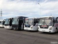 Neoplan N2216/3SHDL Tourliner у008ма, MAN R08 Lion's Top Coach у009ма, Hyundai Universe Space Luxury у007тт, Hyundai Universe Space Luxury т002кт
