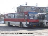 Курган. Ikarus 256 ав081