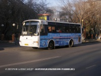 Курган. ПАЗ-4230-03 ав143