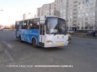 Курган. ПАЗ-4230-03 ав021