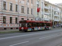 Гомель. МАЗ-107.066 AA6335-3