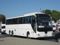 Анапа. MAN R08 Lion's Top Coach к385та