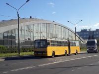 Санкт-Петербург. Ikarus 280.33O х943се