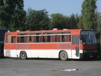 Анапа. Ikarus 256.75 с944ве