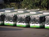 Москва. ЛиАЗ-5292.22 ен250, ЛиАЗ-5292.21 ек333, ЛиАЗ-5292.22 ен245