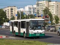 Санкт-Петербург. НефАЗ-5299-30-32 (5299CN) х520ск
