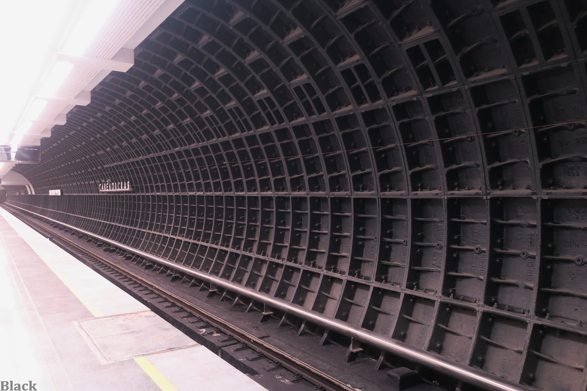 Москва. Оформление станции Савёловская, Большая кольцевая линия