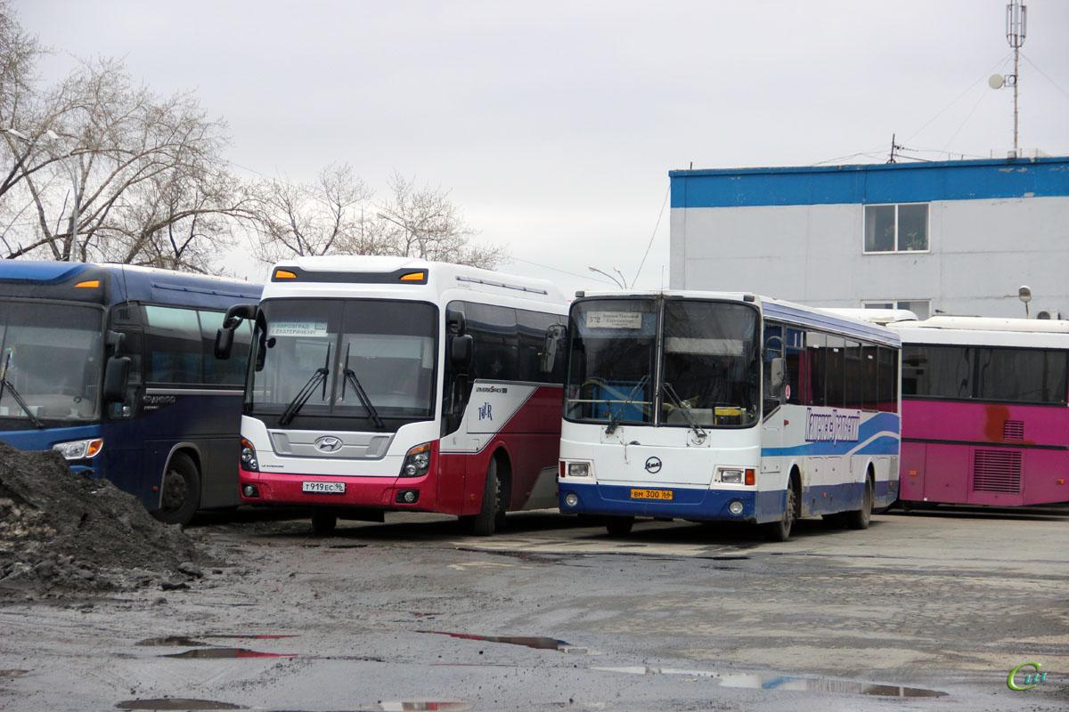 Екатеринбург. ГолАЗ-5256.33-01 вм300, Hyundai Universe Space Luxury т919ес