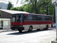 Краснодар. Ikarus 250.59 о718еа
