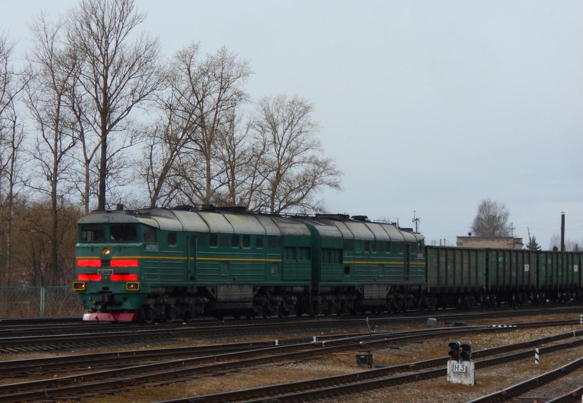 Ржев. 2ТЭ116-1593