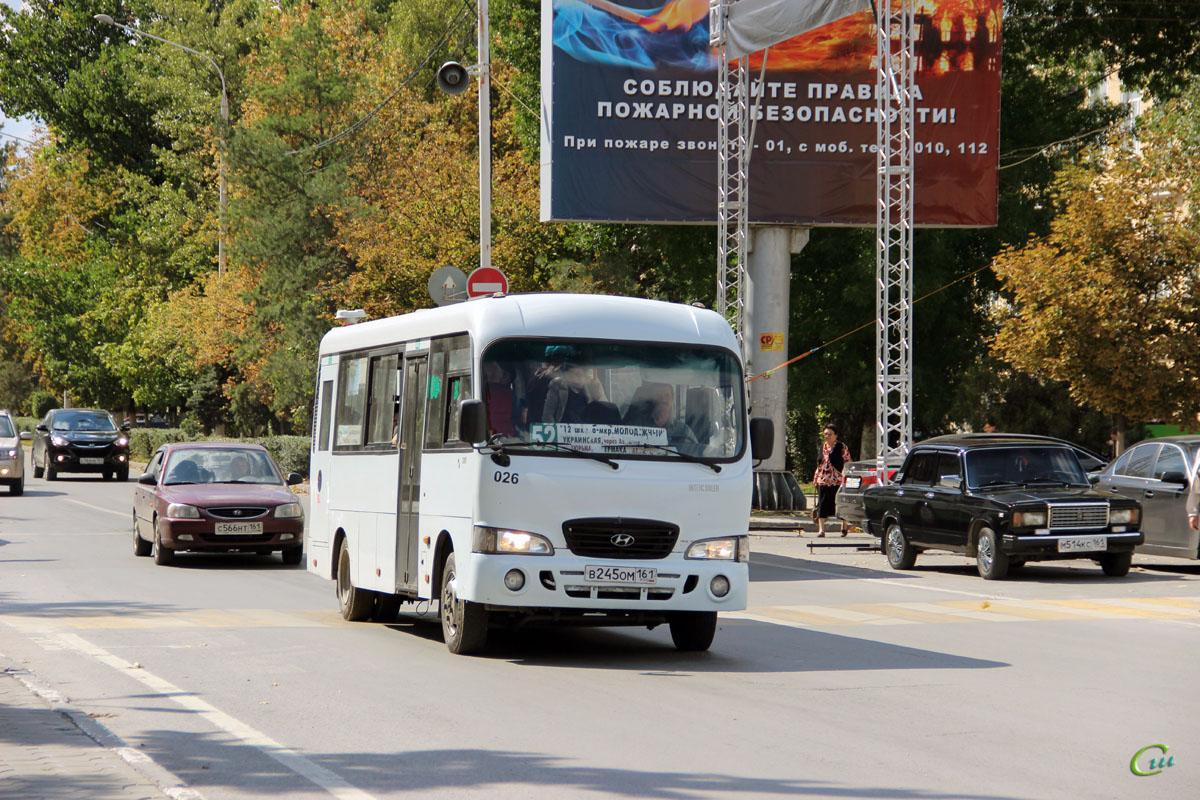 Новочеркасск. Hyundai County LWB в245ом