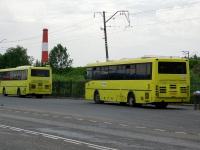 Московская область. ЛиАЗ-5256.13 ен338, ЛиАЗ-5256.13 ен339