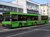 Гомель. МАЗ-105.065 AB6496-3