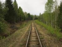 Алапаевск. Перегон Калач - Санкино, Алапаевская узкоколейная железная дорога