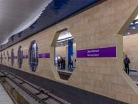 Санкт-Петербург. Станция Дунайская