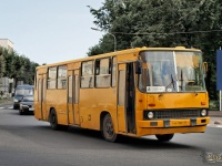 Великий Новгород. Ikarus 263 ав900