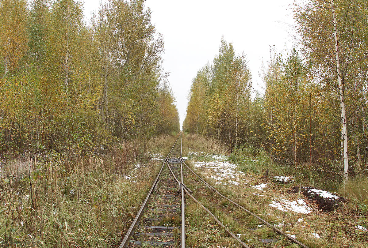 Гусь-Хрустальный. Разъезд Фрезерный карьер (7 поле)