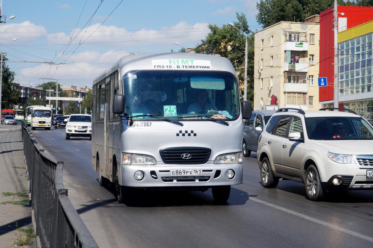 хочется, ростов дон картинки на автобусах фотографии