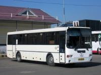 Новокузнецк. ГолАЗ-5256.34 ао233