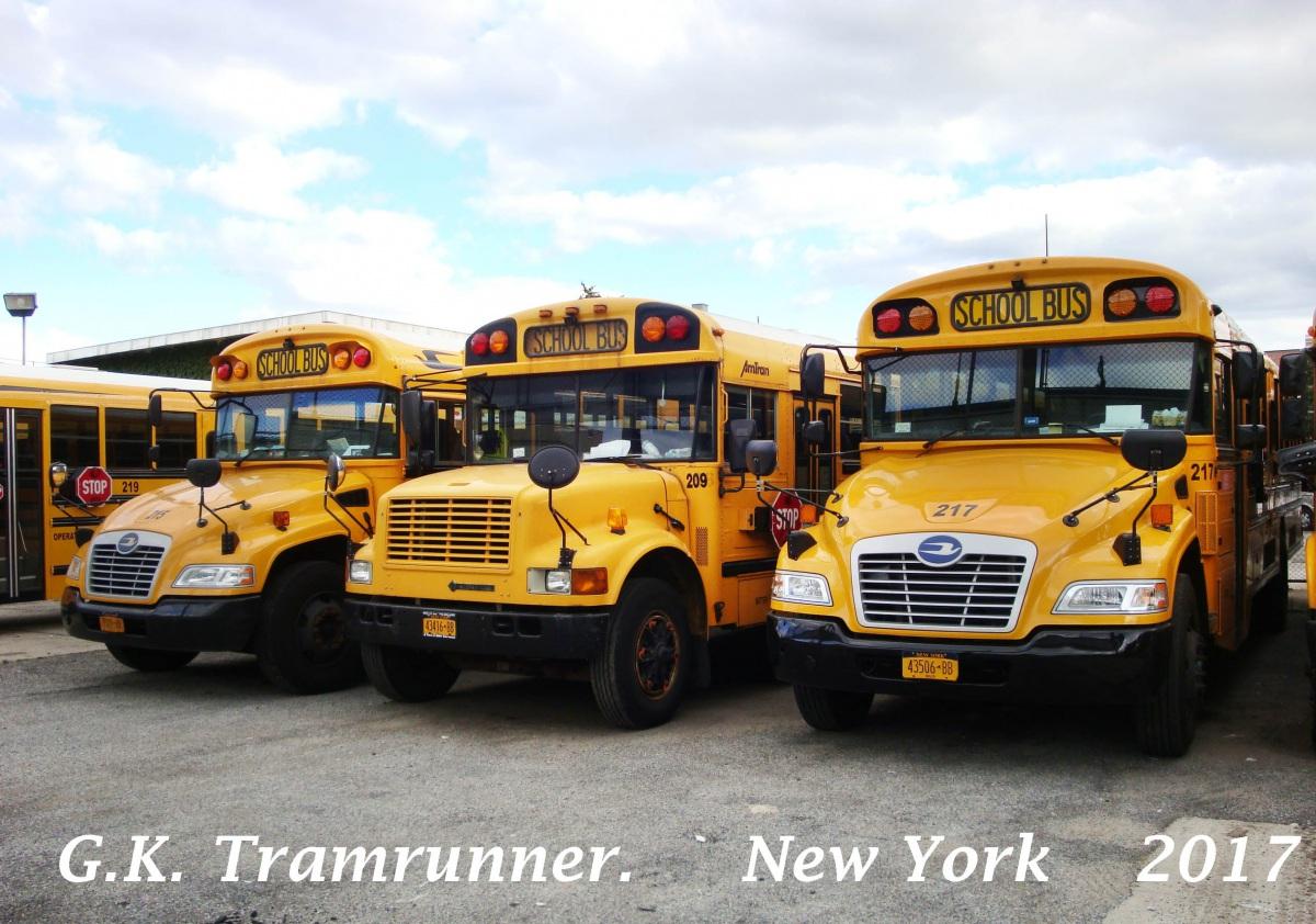 Нью-Йорк. Blue Bird Vision 43506-BB, AmTran CS 43416-BB