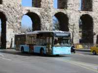 Стамбул. Tezeller LF1200 34 YA 8742