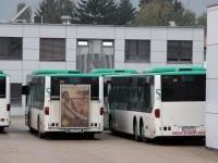 Грац. Mercedes-Benz O530 Citaro G 387 EZ, Mercedes-Benz O530 Citaro L G 384 DY