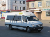 Курган. Луидор-2236 (Mercedes-Benz Sprinter) х450кх