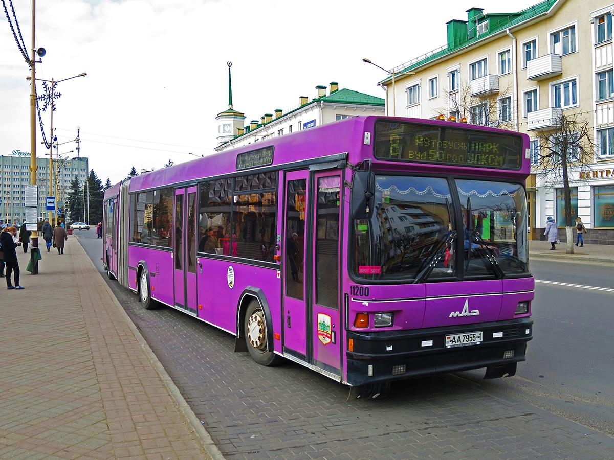 Барановичи. МАЗ-105.065 AA7955-1