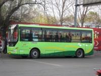 Цзиси. Zhong Tong LCK6809EVG6 黑G 13056