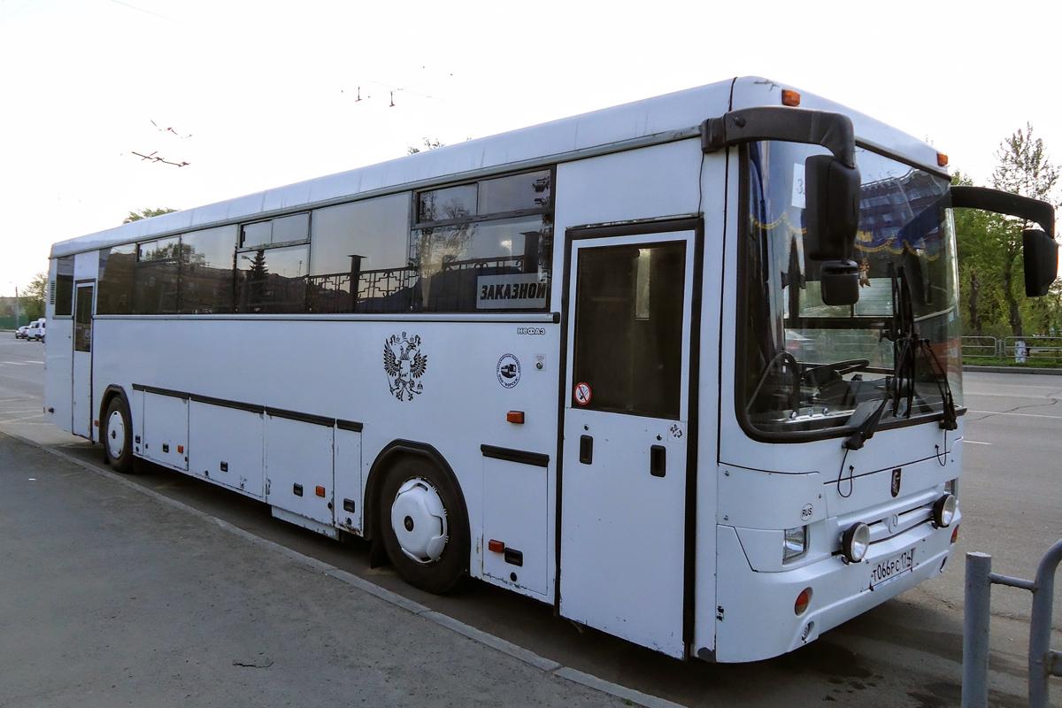 домашняя автобус челябинск казань фото заказ доставкой любой