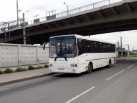 Санкт-Петербург. ГолАЗ-5256.23-01 в178сн