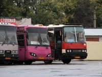 Воронеж. МАРЗ-5277-01 ат999, Ikarus 250 ак617