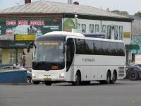 Коломна. MAN R08 Lion's Top Coach ах355