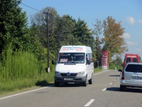Самтредиа. Mercedes-Benz Sprinter 311CDI NNI-636