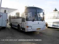 Курган. ПАЗ-4230-03 ав118